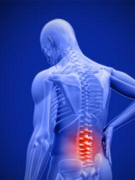 סובלים מכאבי גב תחתון? אורן זריף יוכל לעזור
