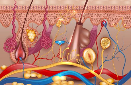 אורן זריף או תרופות נוגדות חרדה? אורן זריף מציע טיפול במחלות עור